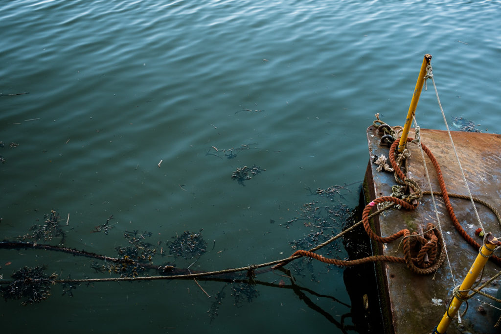 Image of the sea with orange moorings taken at Whitby by Yorkshire photographic artist